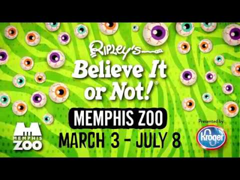 ripley s believe it or not at memphis zoo youtube