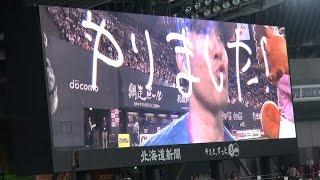 2015年5月23日、札幌ドームで行われた北海道日本ハムファイターズ公式戦...