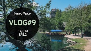 VLOG #9 Живу не тужу, Шоколадный фестиваль, ребенок и собака   17-25.04 Словения