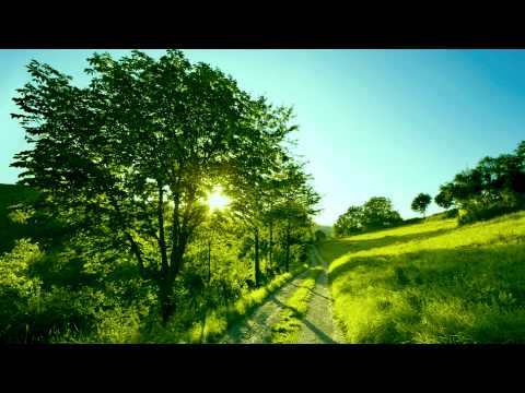 Elizabeth Mitchell - You are my Sunshine
