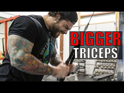 Top 5 Triceps Exercises (MUST TRY THESE!!)