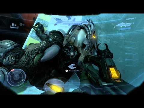 Brutes Halo 5