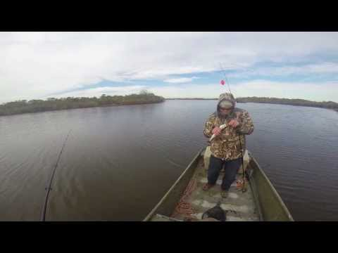 speckled trout fishing capt. austin