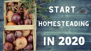 Why You Should Start Homesteading In 2020