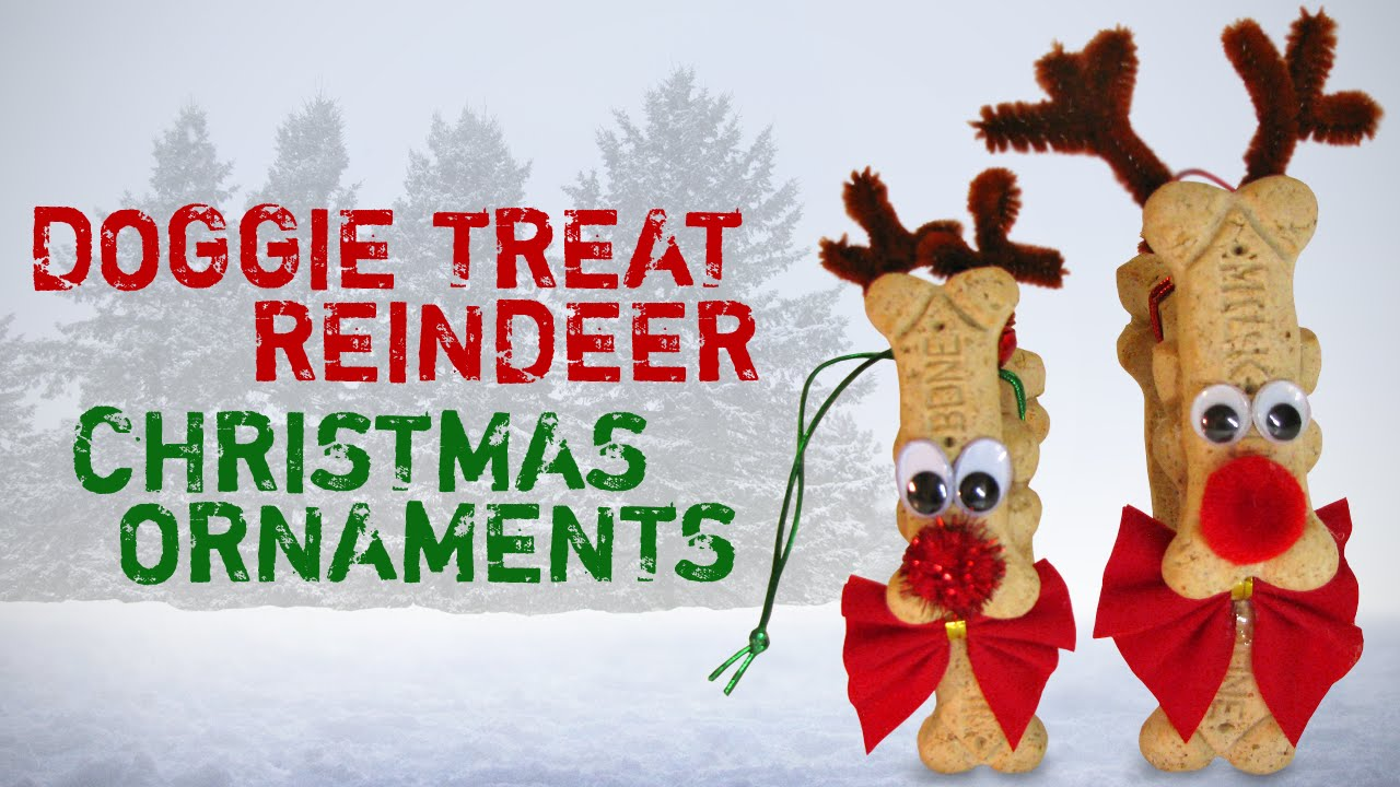 Diy Doggie Treat Christmas Reindeer