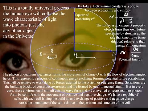 Is Consciousness a Universal Process of Energy Exchange
