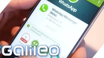 Ist der WhatsApp Video-Call besser als Skype? | Galileo Lunch Break