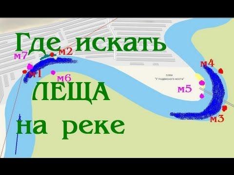 перспективные места для ловли леща на реке