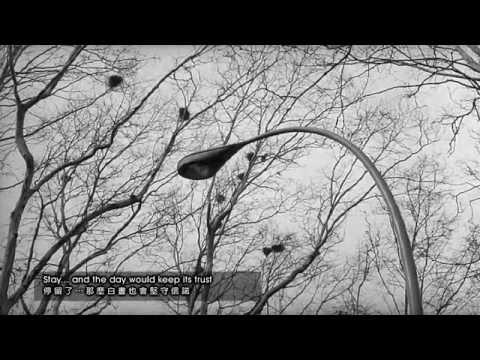 U2 - STAY - (Wings of Desire - 1987)