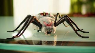 Wild Pets - pająk interaktywny od cobi.pl
