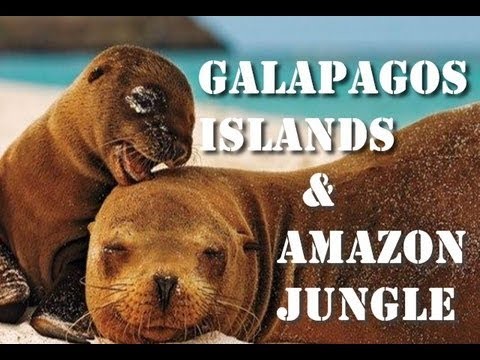Ecuadorian Amazon Jungle and Galapagos Islands by Overkill204