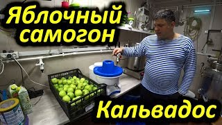 Алкокухня: Яблочный Самогон или Кальвадос в домашних условиях