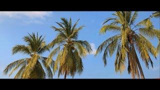 видео Страны мира - Лаос - Оформление виз