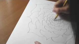 Drawing; Flower