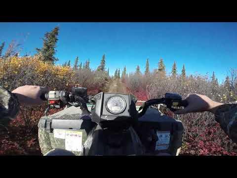 Moose Hunting Trip 2020