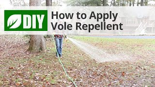How to Apply Vole Repellent