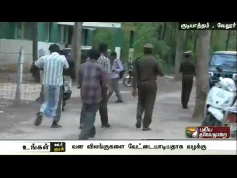 Six men charged for illegal sale of Manuli snakes in Gudiyatham,Vellore