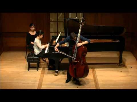 SCHUBERT: Sonata in A minor, D. 821