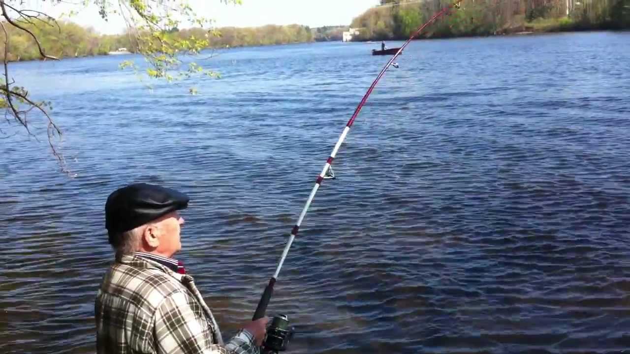 Carp Fishing In Merrimack River Massachusetts Youtube
