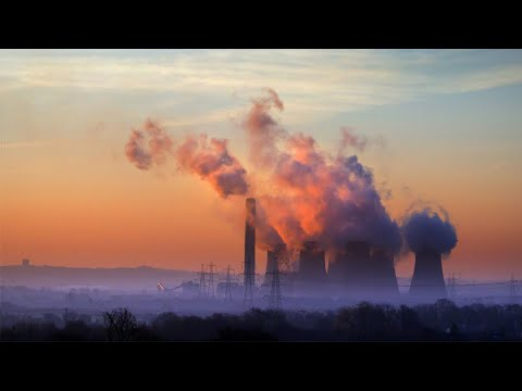 Carbon Offset Programs Are Failing as Climate Solutions