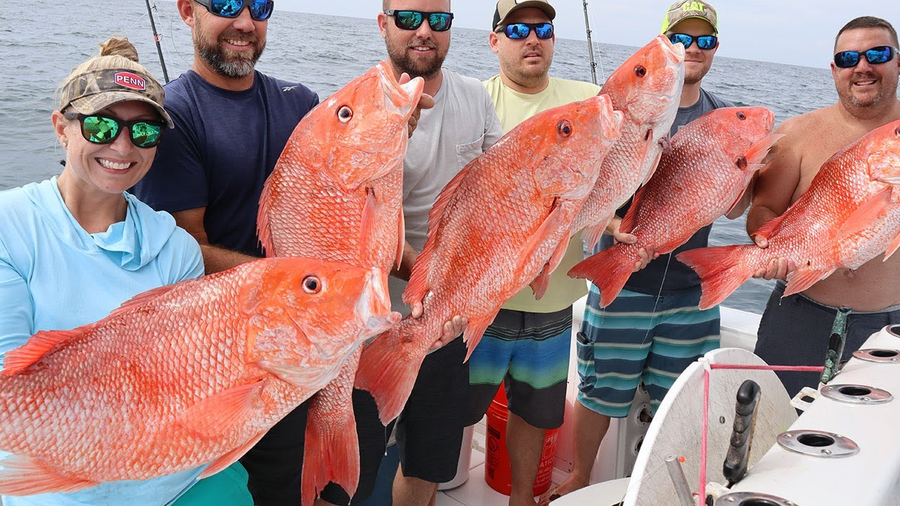 20 LB RED SNAPPER ONLY CLUB {CATCH, CLEAN, COOK}