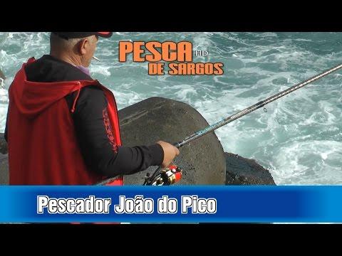 Pesca de Sargos João do Pico Teste de Cana OCEANIS AMORIM