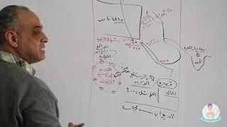 مستر محمد المكاوى فى التاريخ ( الحلقة الاولى )