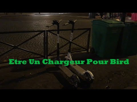 Chargeur Pour Bird, Comment Cela Se Passe?
