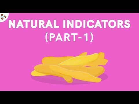 Natural Indicators - Part 1   Acid Bases and Salts   Don't Memorise