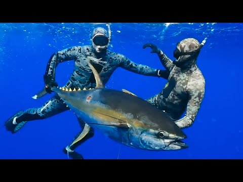Spearfishing Essentials To Get The BIGGEST CATCH | Pole Spear