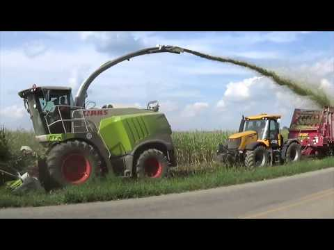 Chopping Corn Silage near Versailles Ohio - August 2017