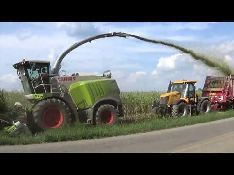 Chopping Corn Silage near Versailles Ohio  August 2017