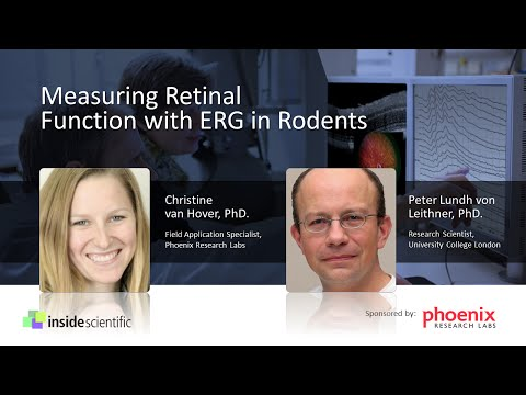 Measuring Retinal Function with ERG in Rodents