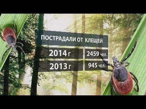 Прививка от клещевого энцефалита детям и взрослым в Москве