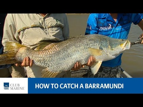 How To Catch A Barramundi - Fishing Tip With Paul Worsteling | Club Marine