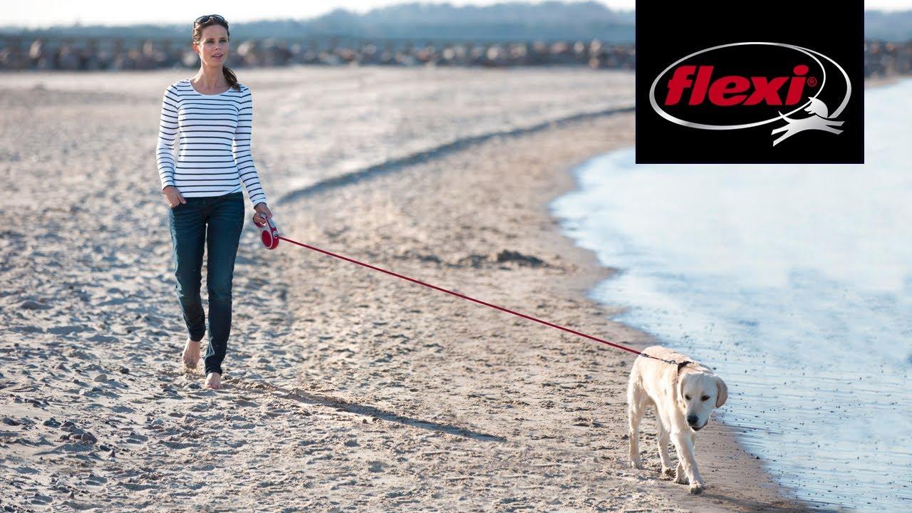 Flexi Dog Lead M Large