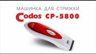 Codos CP-5800 водонепроницаемая машинка для стрижки шерсти животных