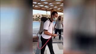 Что случилось с системой все включено после карантина в Египте
