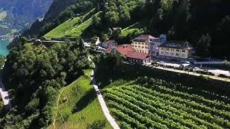 Hotel Tellsplatte Switzerland im Kanton Uri / Siskon