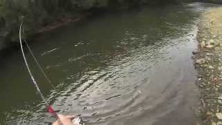 Salmon fishing in Ireland 2014 Pescuit la somon in irlanda