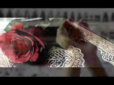 عشاق الجنات _ عبد العزيز عبد الغني thumbnail