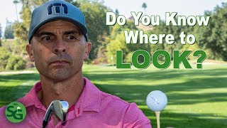 What do You Look At in the Golf Swing? Plus Athalonz Shoe Giveaway!