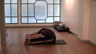 Étirements des chaînes musculaires | Stretching sciatique et bas du dos