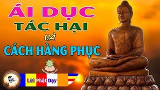 Lời Phật Dạy Về Ái Dục - Tác Hại và Cách Hàng Phục rất hay - Phật Pháp Nhiệm Màu