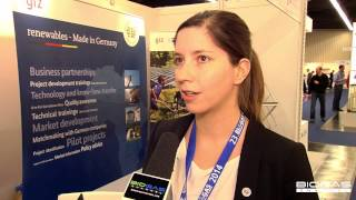 """Renewables - Made in Germany"""": the international project"""