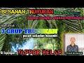 Adu Gengsi Trucukan Para Sultan Hagra Puluan Juta Di Kec Talango Gacor Full Masteran  Mp3 - Mp4 Download