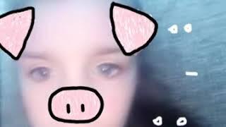 Я свинья 🐷🐽
