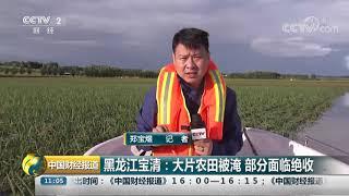 [中国财经报道]黑龙江宝清:大片农田被淹 部分面临绝收| CCTV财经