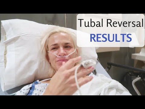 TUBAL REVERSAL SURGERY | The Results! (Trying To Conceive)