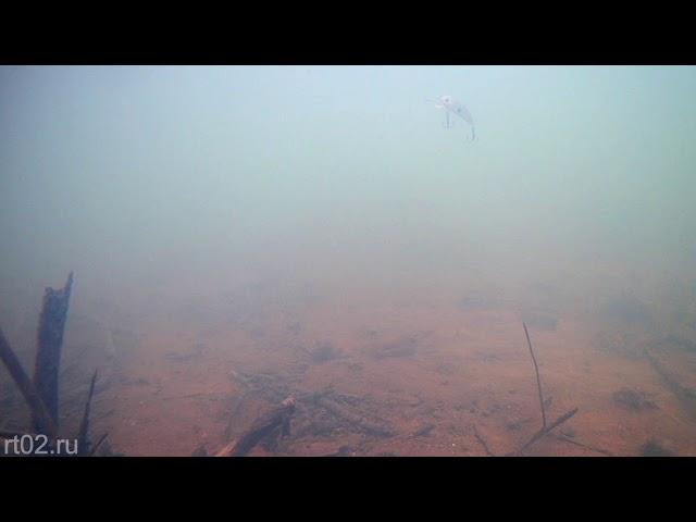 Копия воблера Yo zuri L minnow 44 от Wlure  C544 (подводная съемка)